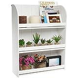 Rustic Whitewashed Wood Wall Mounted 3 Shelf Organizer / Decorative Freestanding Bookcase - MyGift® Home