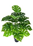 Ginni Bloom Artificial Monstera Plant (without pot)