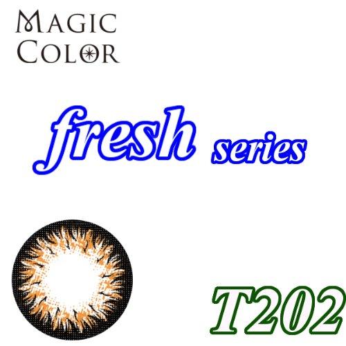 MAGICCOLOR (マジックカラー) fresh T202 度なし 14.0mm 1ヵ月使用 2枚入り