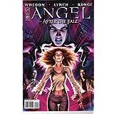 Angel After the Fall #9 cvr B variant (first printing) ~ Brian Lynch