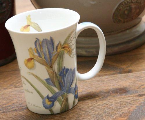 Set Of 2 Royal Botanic Gardens, Kew Iris Fine Bone China Mugs By Creative Tops