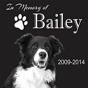 "Personalised Pet Stone Memorial Marker Granite Marker Dog Cat Horse Bird Human 12"" X 12"" Custom Design Personalized Labrador Golden Retriever"