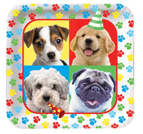 Creative Converting Paw-Ty Time Square Dinner Plates, 8-Count front-535097
