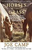 img - for Horses Without Grass: How We Kept Six Horses Moving and eating Happily Healthily on an Acre and a Half of Rock and Dirt: An eBook Nugget from The Soul of a Horse - Vol 2 (Volume 2) book / textbook / text book