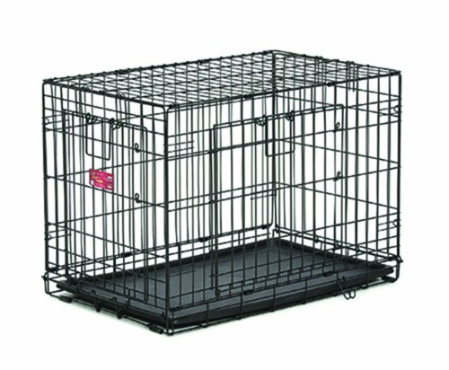 MidWest Homes for Pets Life Stages ACE Double Door Dog Crate, 24-Inch (Double Door Dog Crate 24 compare prices)
