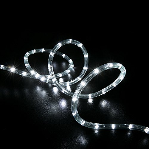 Cool white 38 led rope lights crystal clear pvc tube ip65 wyzworks cool white 38 led rope lights crystal clear pvc tube ip65 water resistant flexible 2 wire accent holiday christmas party decoration lighting aloadofball Choice Image