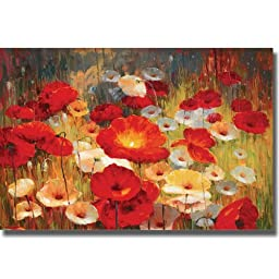Meadow Poppies I by Lucas Santini Premium Stretched Canvas (Ready to Hang)
