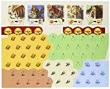 Mayfair Games Settlers of Catan Expansion Board Game