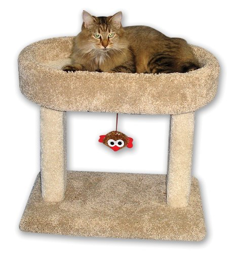 Beatrise Pet Products Kitty Cradle BP153