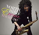 NORTH BIRD