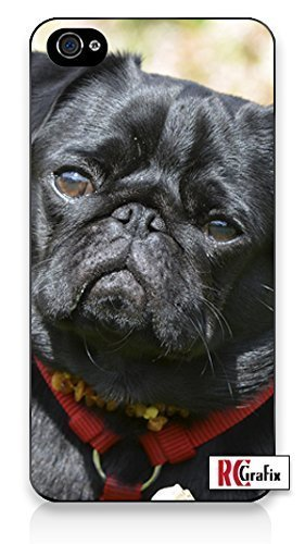 Adorable Black Pug Dog UV Print (not a sticker) Premium Direct Print iphone 6 Quality Hard Snap On Case for iphone 6/Apple iphone 6 - AT&T Sprint Verizon - White Case PLUS Bonus RCGRafix The Best Iphone Business Productivity Apps Review Guide