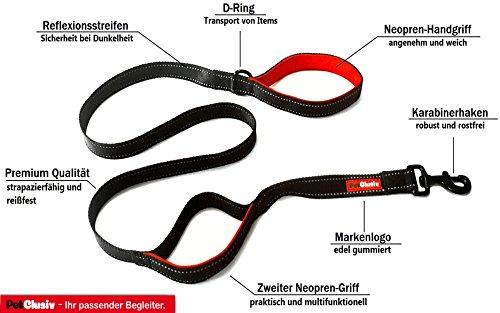 hundeleine-reflektierend-aus-nylon-in-schwarz-weihnachten-geschenke-neopren-griffe-in-edlem-rot-160m
