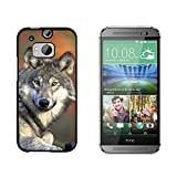 Gray Wolf with Fall Background - Snap On Hard Protective Case for HTC One M8 - Black