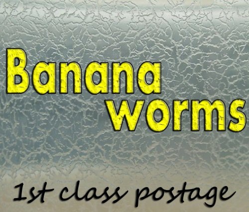 live-food-for-fish-fry-banana-worms-starter-culture-aquarium-fish-tank