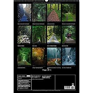 Wege 2015 (Wandkalender 2015 DIN A2 hoch): Wege, die Lust machen, sie zu gehen. (Monatskalender, 14