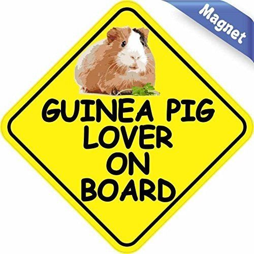 Guinea Pig Lover On Board Guinea Pig Magnets Magnetic Vehicle Sign
