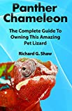 Panther Chameleon: The Complete Guide to Owning this Amazing Pet Lizard