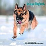German Shepherds Calendar - 2015 Wall calendars - Dog Calendars - Monthly Wall Calendar by Magnum