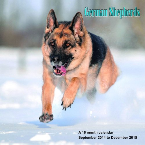 German Shepherds Calendar - 2015 Wall calendars - Dog Calendars - Monthly Wall Calendar by Magnum