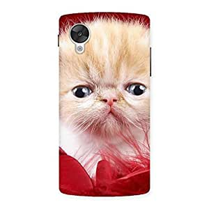 Cute Kitty In Red Fur Back Case Cover for Google Nexsus 5