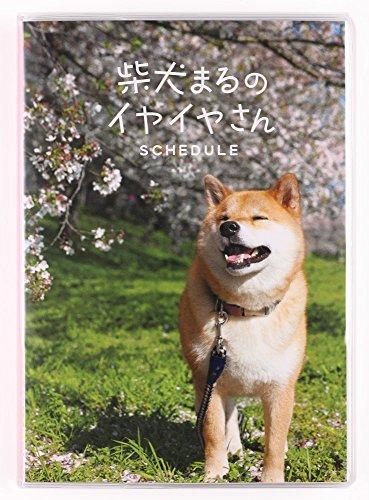 デルフィーノ 2016年手帳 柴犬まるのイヤイヤさん 散歩  【2015年12月始まり】  B6サイズ MAR-35335