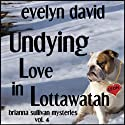Undying Love in Lottawatah: Brianna Sullivan Mysteries (       UNABRIDGED) by Evelyn David Narrated by Wendy Tremont King
