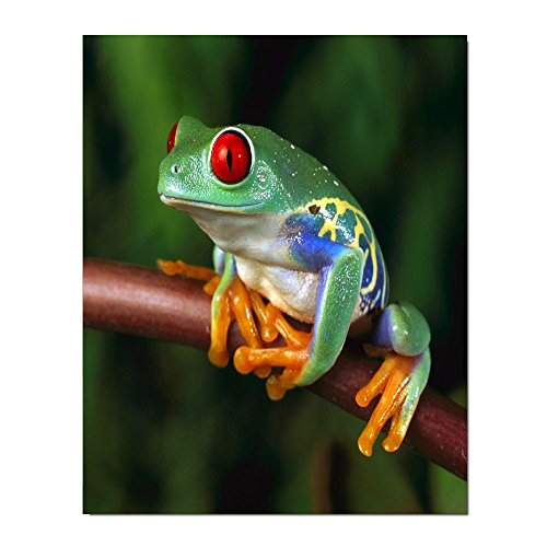 christmas-decor-cute-tree-frog-fade-resistant-poster-print-85x11one-side