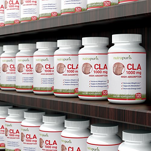 protein powder weight loss reviews