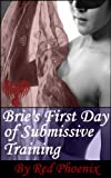img - for Brie's First Day of Submissive Training (Brie, #1) book / textbook / text book