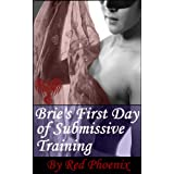 Brie's First Day of Submissive Training (Brie, #1) ~  Red Phoenix