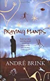 Praying Mantis (0099488949) by Brink, Andre