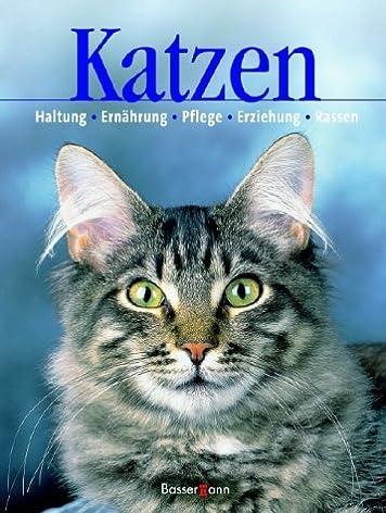 Katzen zu verschenken in berlin