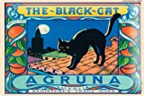 Tin Sign Poster THE BLACK CAT Agruna Valencia Spain tiles moon church night 20x30 cm Large Metal Wall Decoration Vintage Retro Classic Plaque