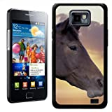 Fancy A Snuggle Close Up Of Horses Face Design Hard Case Clip On Back Cover for Samsung Galaxy S2 i9100