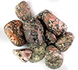 1 POUND LEOPARD SKIN JASPER TUMBLED AND POLISHED 1 TO 2 LEOPARDSKIN