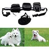 Alcoa Prime Pet Dog Leash Running Jogging Puppy Dog Lead Collar Sport With Adjustable Waist Belt For Running Hiking Jogging Walking