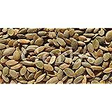 Pumpkin Seed Kernels Roasted Light Sea Salt By Gerbs - 2 LBS Premium Grade Pepitas - Top 10 Food Allergen Free - Vegan & Kosher - Seed Country of Origin Mexico - Made in Rhode Island