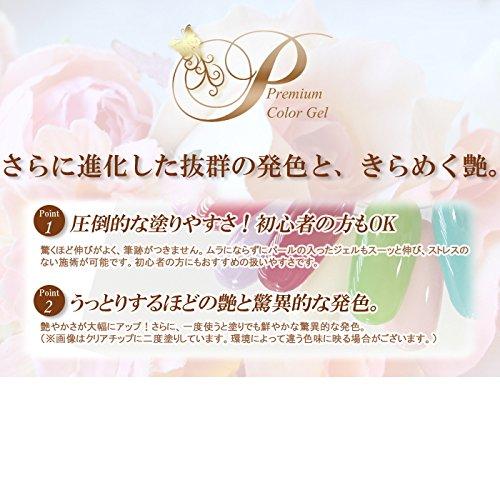 ジェルネイル《抜群の発色!》Premium Gel ソークオフ プレミアムカラージェル(5g) (NC001 貴婦人の口紅)