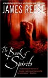 The Book of Spirits (0060561076) by Reese, James