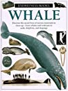 Whale (Eyewitness Books)