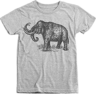 Trunk Candy Boys Prehistoric Woolly Mammoth Premium Tri-blend T-shirt