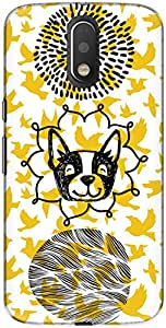 The Racoon Grip Woof with the Birdy hard plastic printed back case/cover for Motorola Moto G Play 4th Gen
