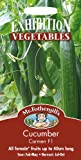 Mr Fothergills - Pictorial Packet - Vegetable - Cucumber Carmen F1 - 5 Seeds