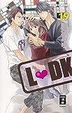 L-DK 19