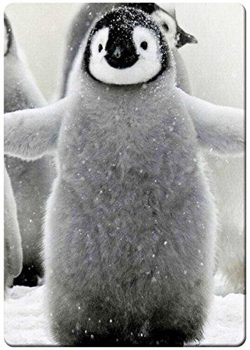 Adorable Puffy penguin fridge magnet (Penguin Fridge compare prices)