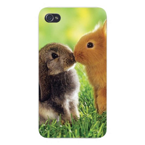 Apple Iphone Custom Case 5 / 5S White Plastic Snap On - Cute Baby Bunny Rabbits Kissing Smooching front-1059031