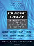 img - for Extraordinary Leadership: Addressing the Gaps in Senior Executive Development book / textbook / text book