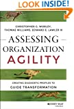 Assessing Organization Agility: Creating Diagnostic Profiles to Guide Transformation (J-B Short Format Series)