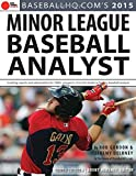 2015 Minor League Baseball Analyst
