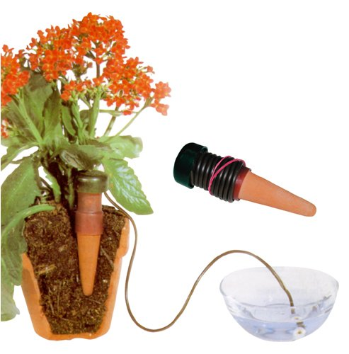 Self-Watering Probes - Vacation Plant Waterers - 5 Pack